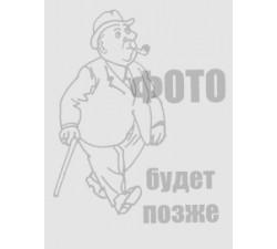 Шорты Rаmon Miele 103-RMX-401